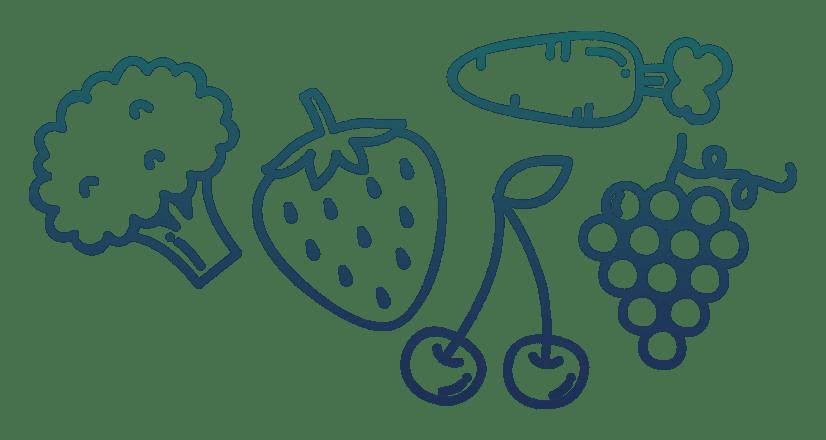 frutas-endocirugia-min